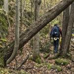 Hiking Frontenac 7